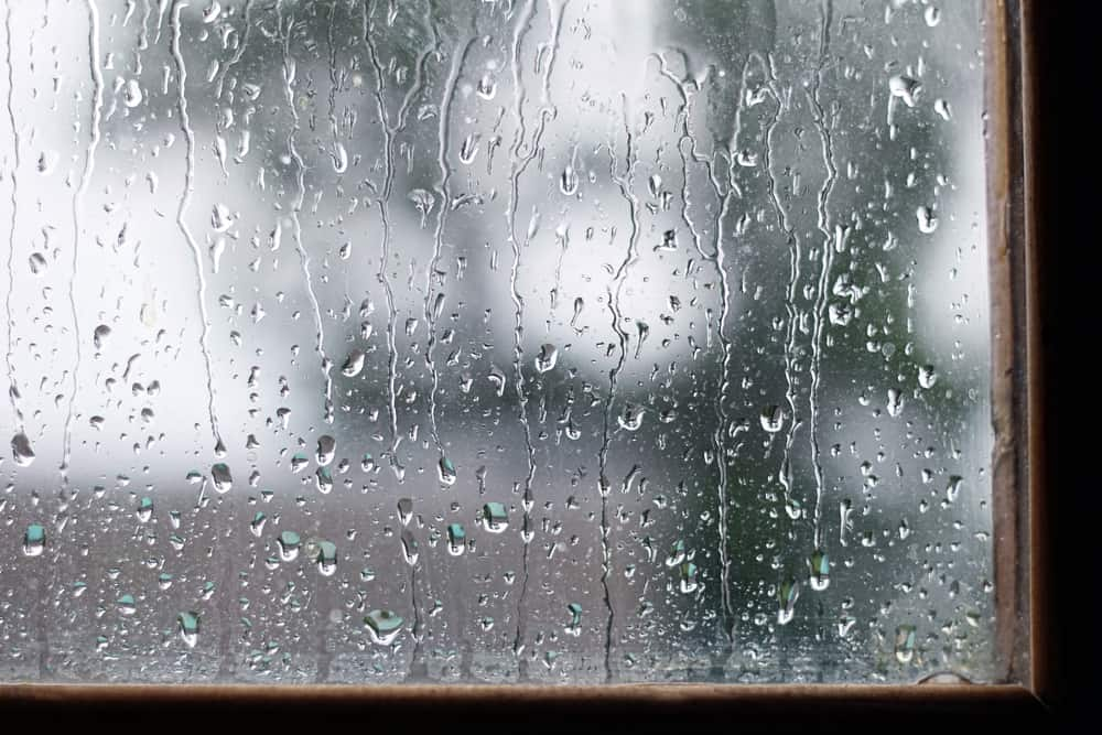 Rainy day, rain on window pane.