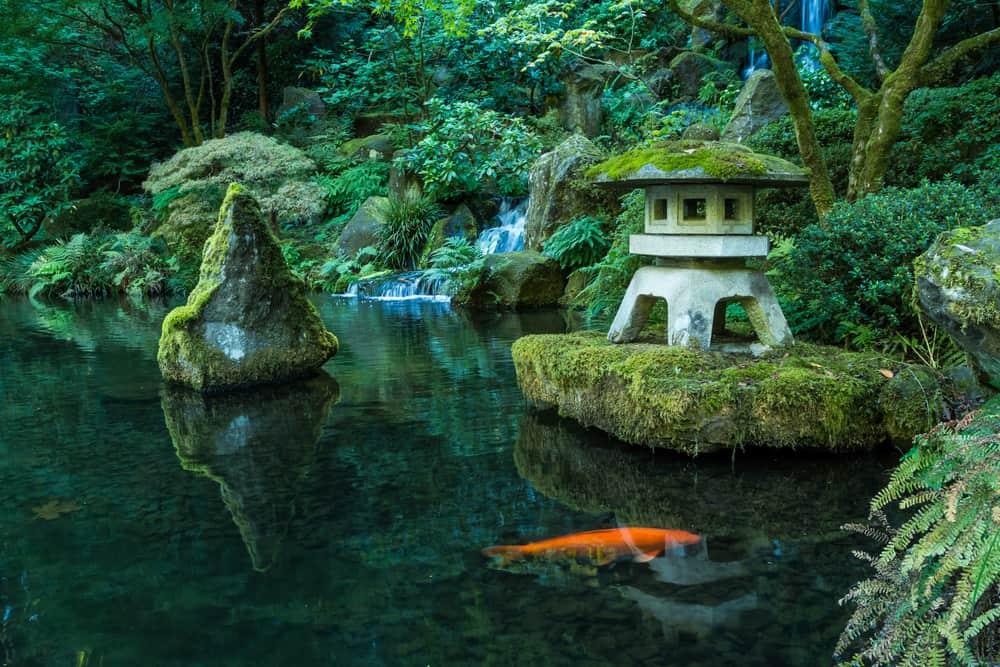 Strolling Pond Garden at Portland Japanese Garden