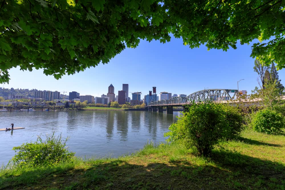 View of Portland from a park